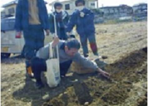 農業体験の写真